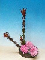 Как сделать икебану из цветов, соблюдая все правила расстановки растений. Источник http://www.mytrilogylife.com
