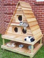 Как сделать «дачный» домик для кошки?— ПРОСТО! Источник http://catcondo.wieldtheweb.com