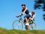 Выбрать детское велокресло— ПРОСТО